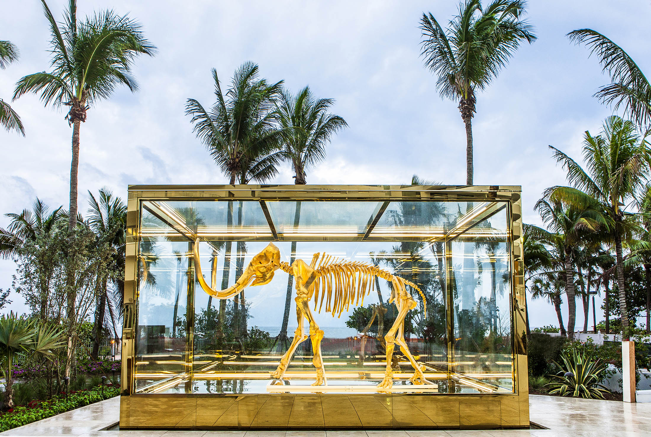 mammoth skeleton in large glass case