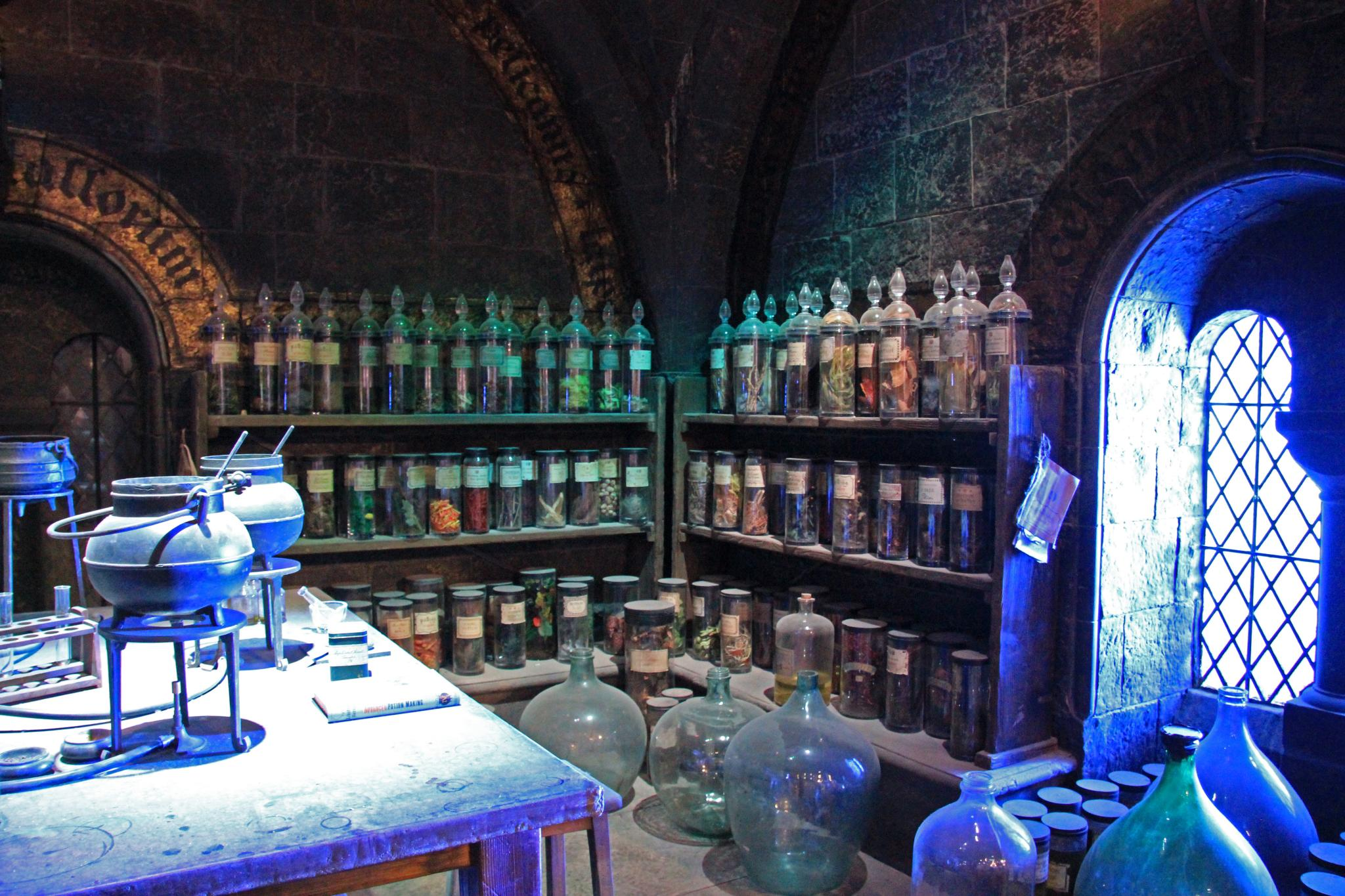 potions on shelves in harry potter exhibit