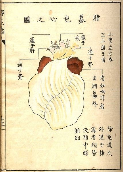 Illustration of human heart surrounded by Japanese writing.