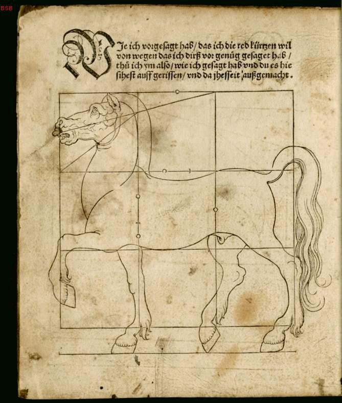 Drawing of a horse with gridlines to help with proportion