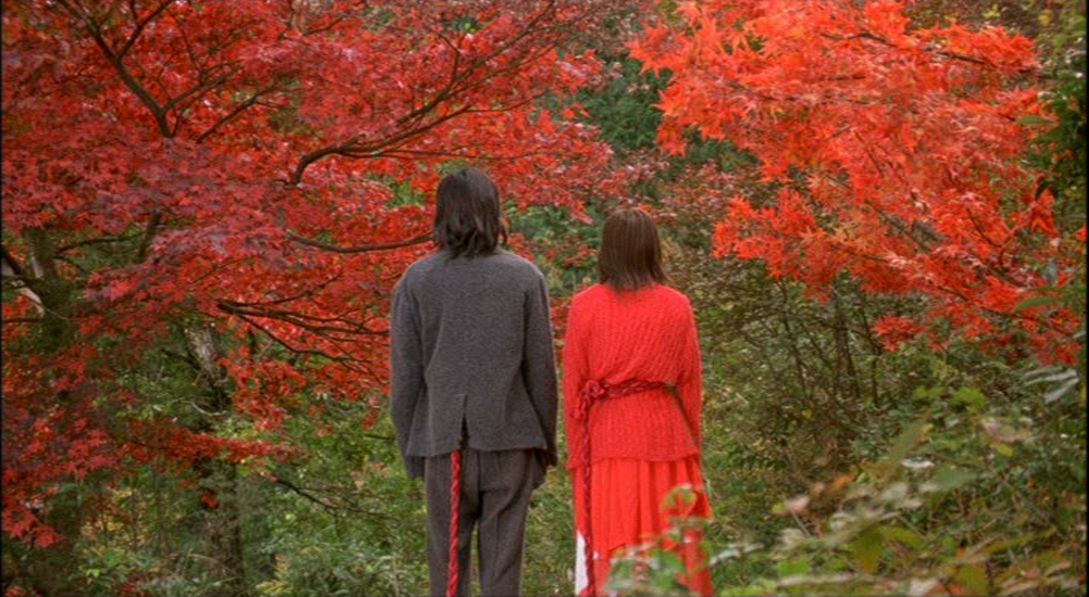 A man and woman stand in forest of trees with red leaves.