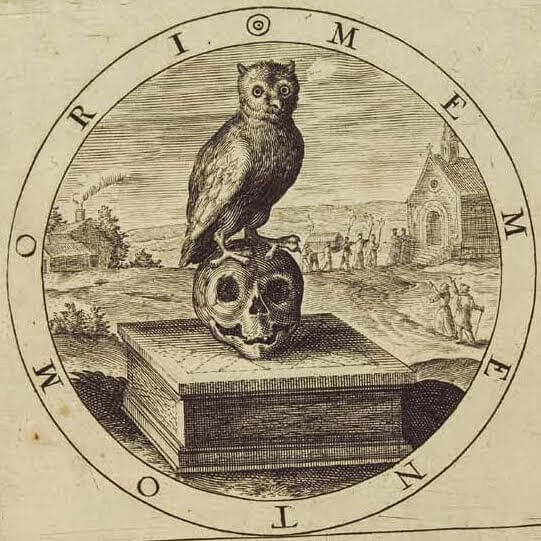 Drawing of an owl perched on a skull
