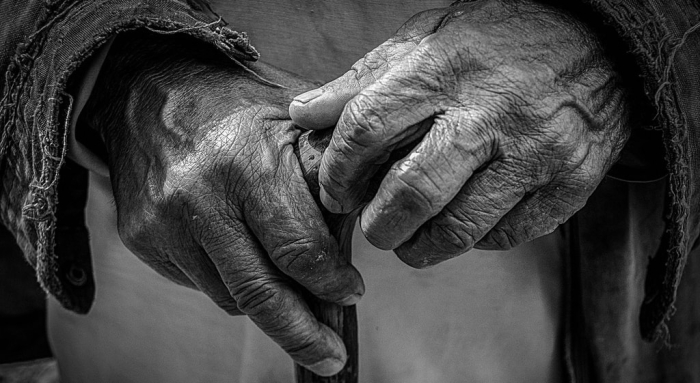 The hands of an older person in black and white