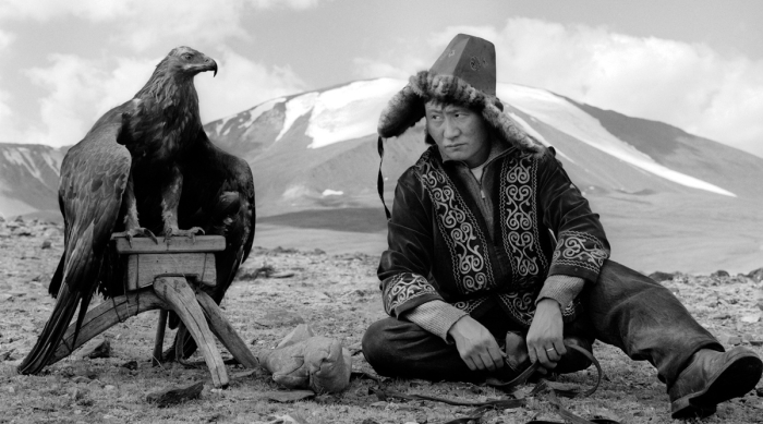 Mongolian in traditional garb sits with large falcon on perch in desert.