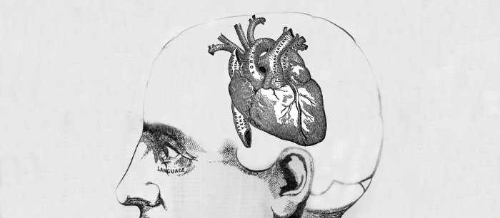 drawing of a heart inside someone's head