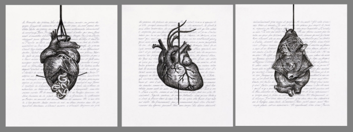 Three drawings of a heart