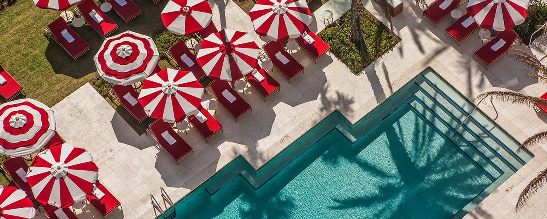 hotel pool surrounded by palm trees and striped umbrellas