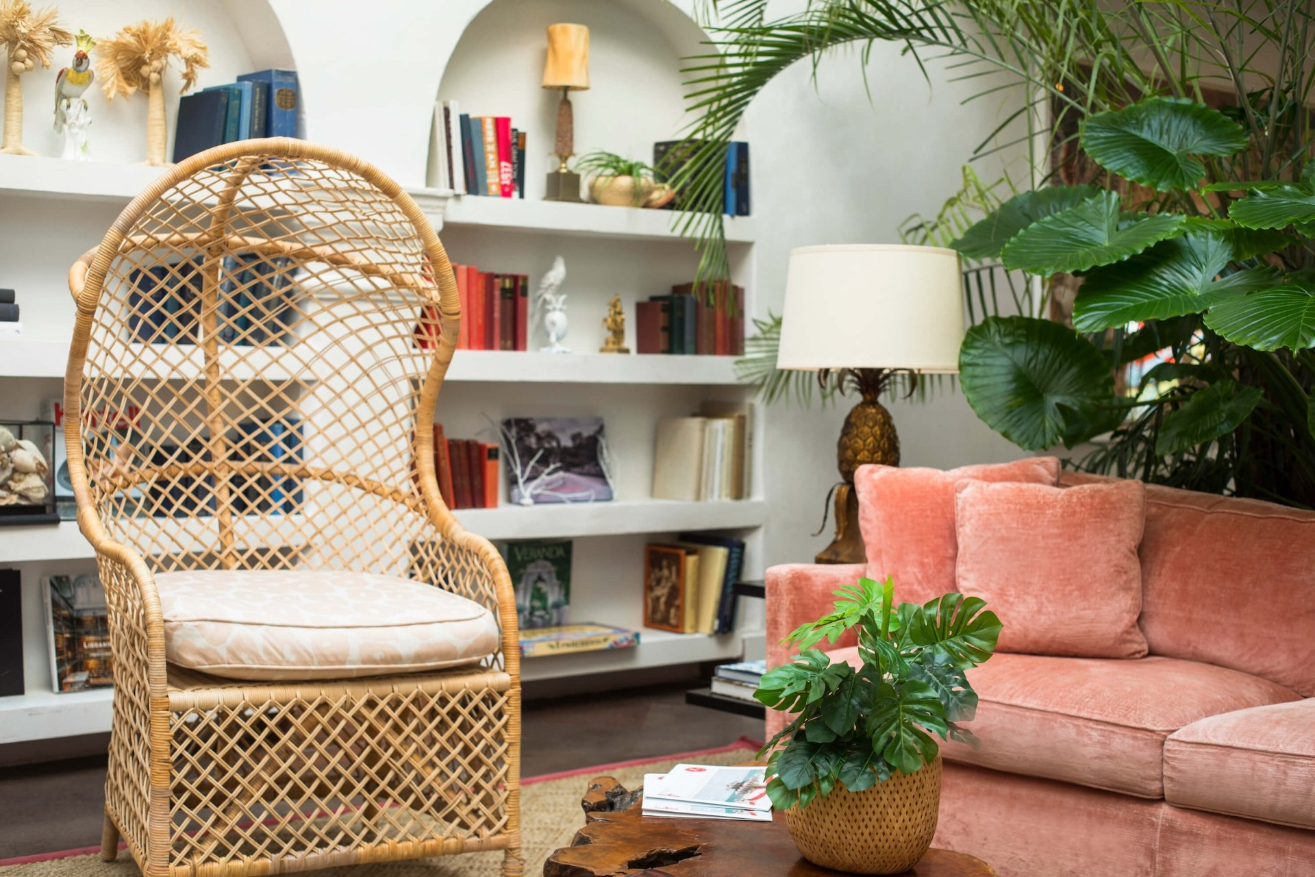 wicker chair and pink couch sit in front of with book shelves and plants